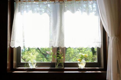 Refreshing window