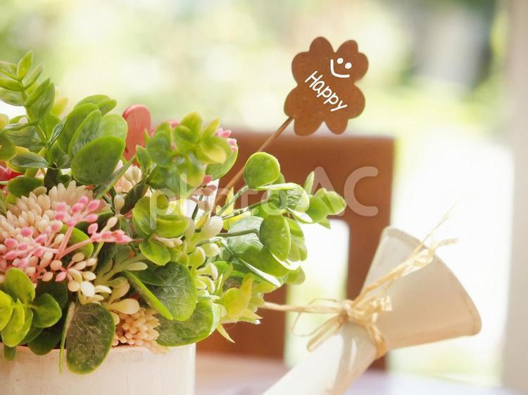 花の鉢植え   Happyの写真