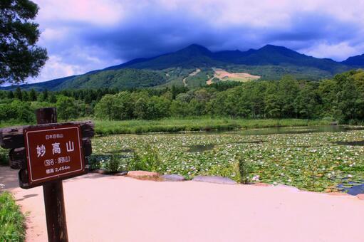 Niigata Imori Pond