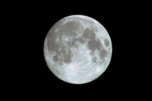 Mid autumn Moon (2014) (Age 13.9)