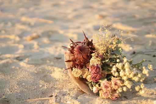 Twilight dried flowers on the beach
