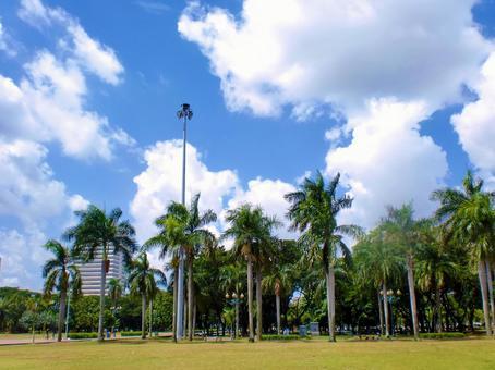 델리의 공원
