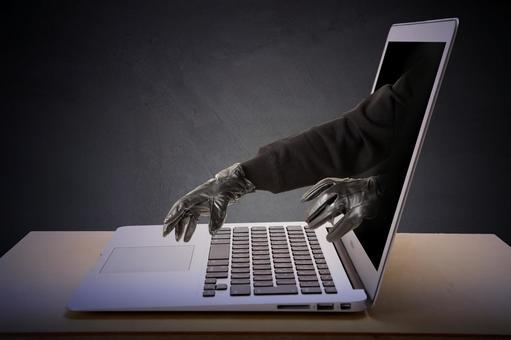 Net crime 24