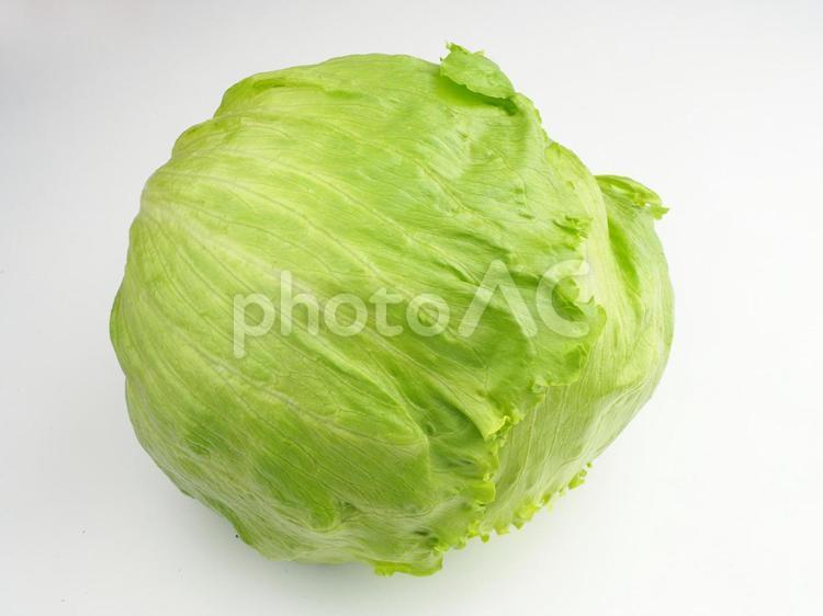 レタスの写真
