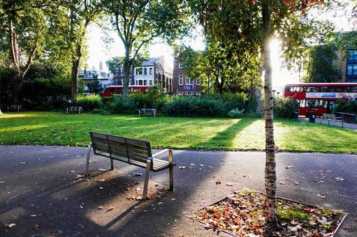 British Morning Park Bench Asahi and London Bus Autumn