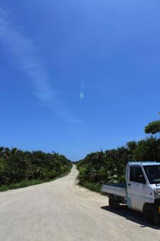 One road and light tiger Okinawa Kubinjima