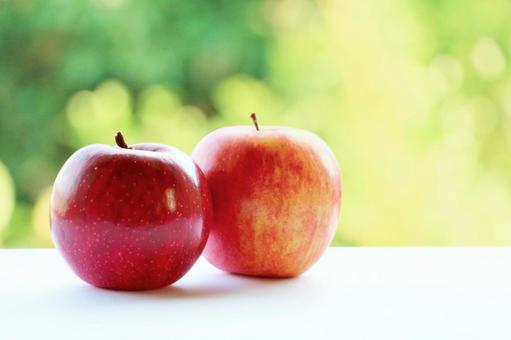 안아 사과