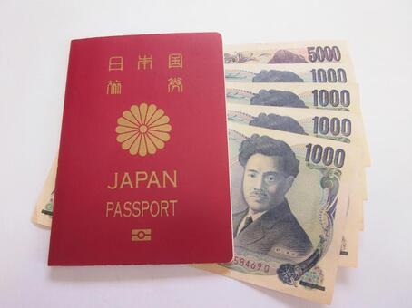 여권과 한화