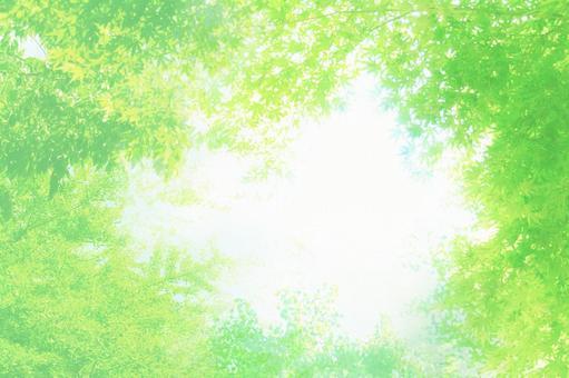 White and green glitter tree leak image summer background