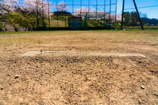 벚꽃과 야구장 투수 마운드
