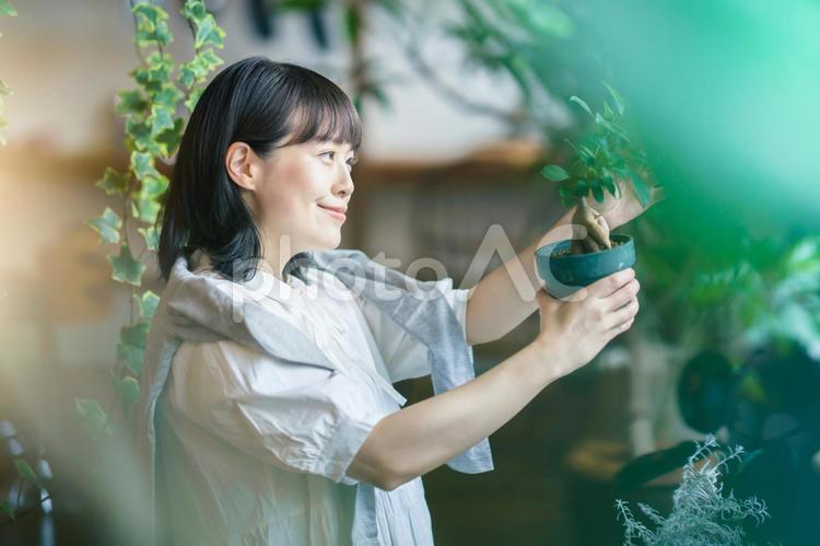 笑顔で観葉植物の様子を見る若い女性の写真