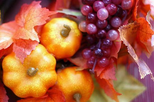 가을 수확