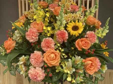 Opening celebration flower