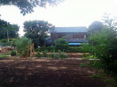시골의 집
