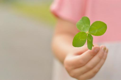 Child's hand and four leaf clover