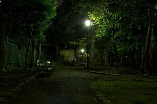 밤의 공원 벤치