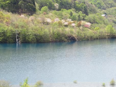 奥四万湖(四万ブルー)のコバルトブルーの湖面