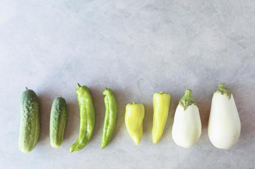 Gradation of summer vegetables