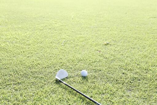 Grass club and golf ball 7
