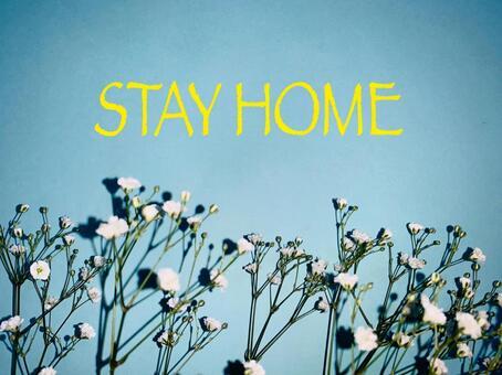Stay Home Kasumi Grass