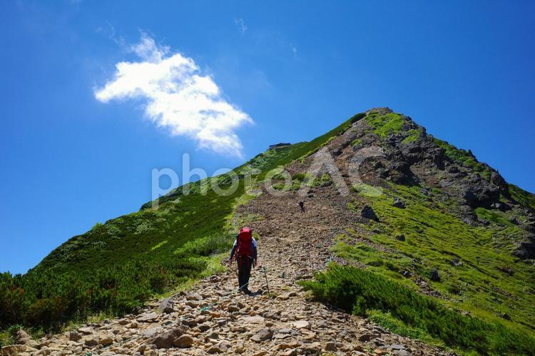 登山・登山者・登山者のイメージ素材/八ヶ岳連峰・赤岳の頂上を目指して登山する人の写真