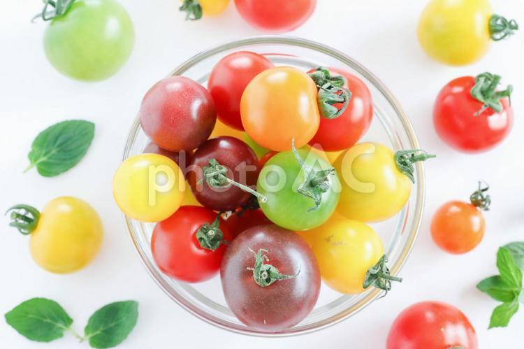 カラフルなトマトの写真