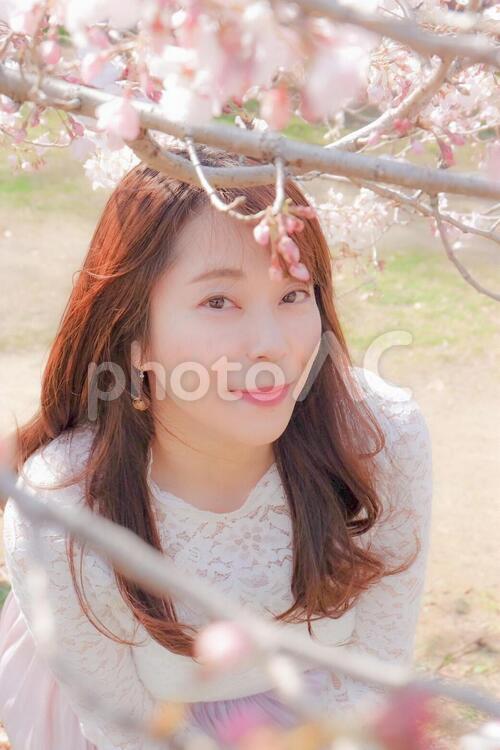 桜と女性の写真