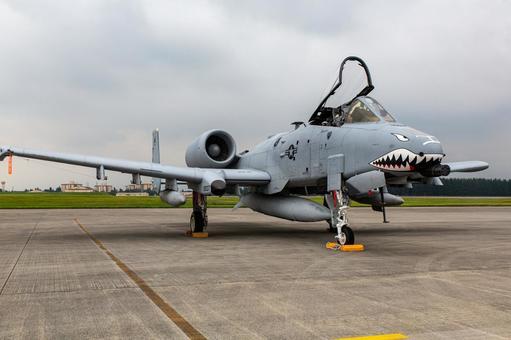 Ground Exhibit US Air Force A-10 Thunderbolt Fighter (Yokota Air Base, Tokyo)