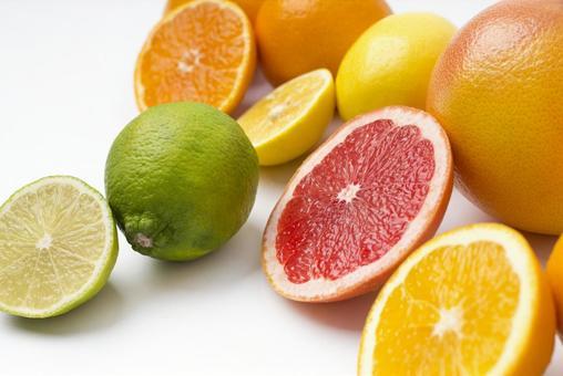 컷 오렌지 과일 9