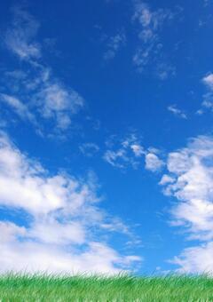 맑은 하늘 [세로]