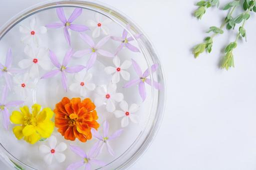 Floating flower and green with different vitamin colors
