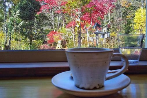 Forest cafe windowsill