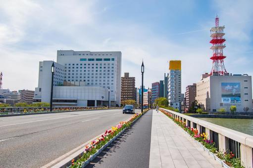 Tulips on Bandai Bridge