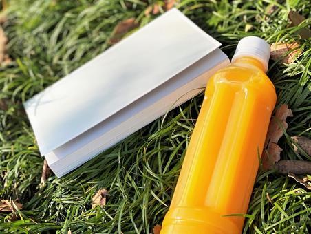 書籍和橙汁