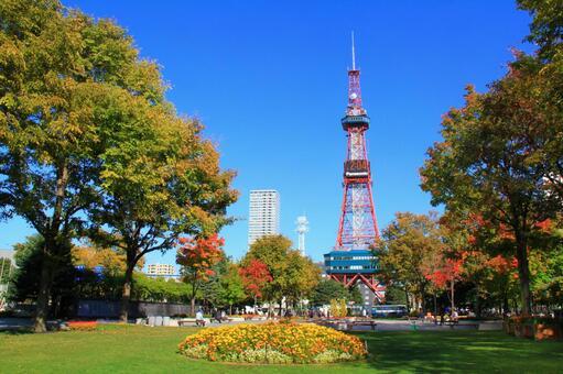 秋天的大通公園