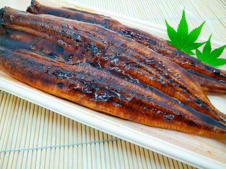 Eel long grill