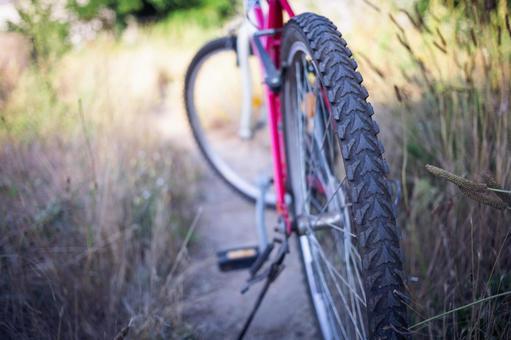 自行车轮胎14