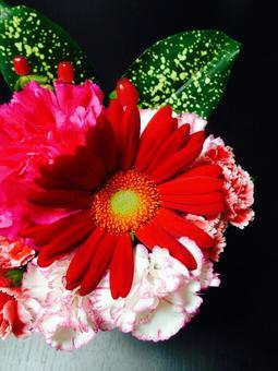 Flower arrangement Ⅱ