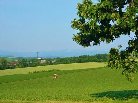비 에이 언덕의 풍경 농사