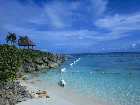 Cebu Island C