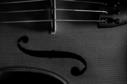 中提琴單色