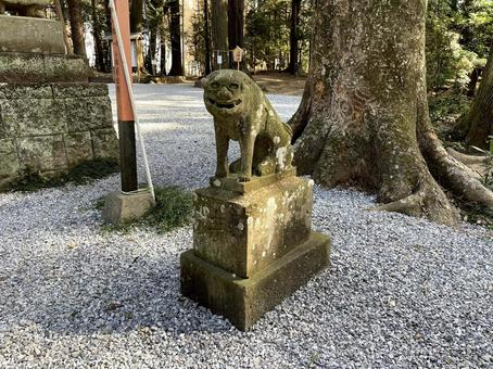 The first guardian dog