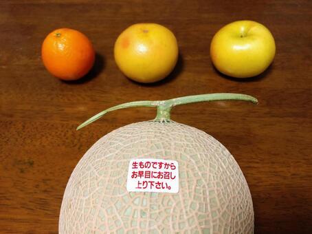 과일 유통 기한 멜론 과일
