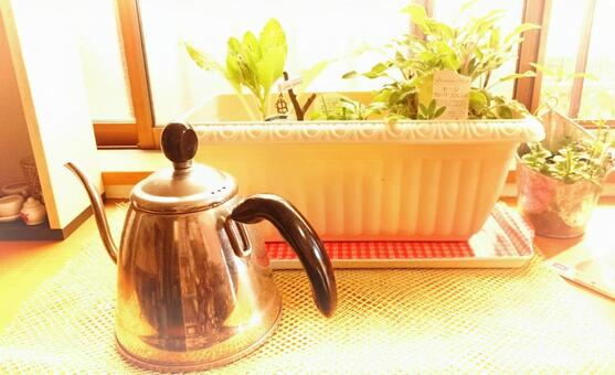Kettle and kitchen herbs