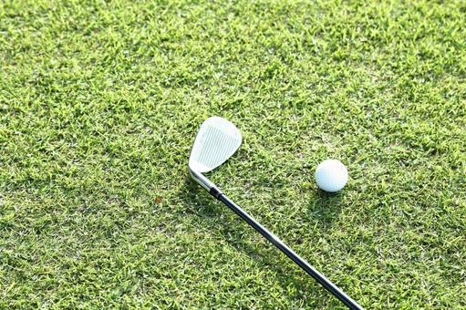 Grass club and golf ball 2