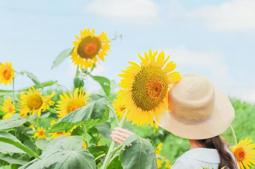 Sunflower and woman ②