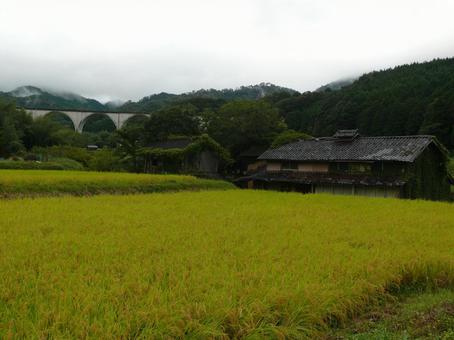 시골의 풍경