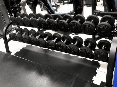 Free weight dumbbell storage