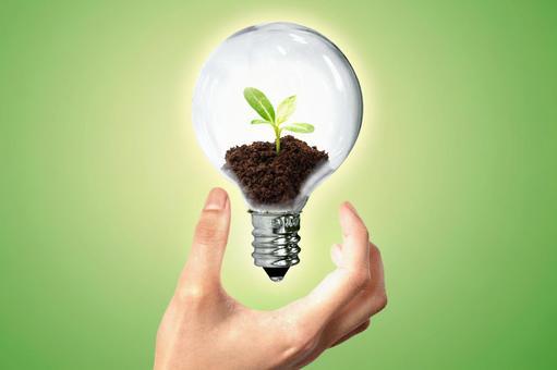 Electric bulb Eco 8
