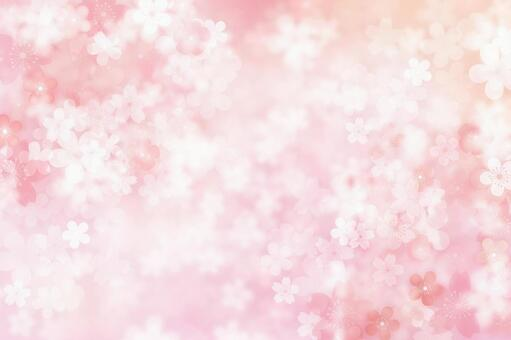 Cherry blossoms snowstorm background